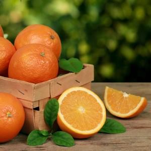 fresh_arizona_navel_oranges