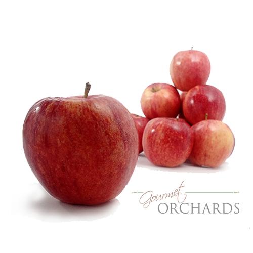 washington organic fuji apples