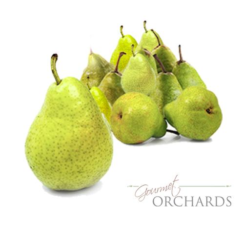 Organic Green D'Anjou Pears